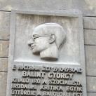 Bálint György domborműves emléktábla