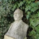 Darnay Kálmán