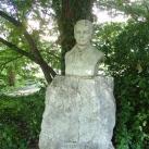 Kitaibel Pál-mellszobor