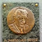 Dr. Juhász-Nagy Sándor domborműves emléktábla