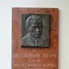 Cserháti István-emléktábla