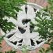 Középkori Romkert - Nemzeti Emlékhely épületdíszítő plasztikái