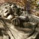 Haldokló oroszlán