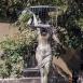 Vízjáték-szobor és díszkút