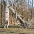 Erdész-emlékmű