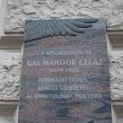 Gál Nándor Geláz emléktáblája
