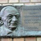 Galyasi Miklós domborműves emléktábla