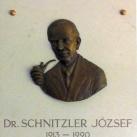 dr. Schnitzler József-emléktábla