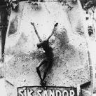 Sik Sándor egykori síremléke