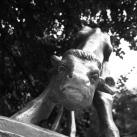 Boci-szobor