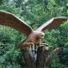 Turul madár