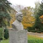 Bródy Imre