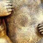 Mackó-szobor