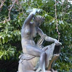 Halon lovagló nimfa