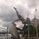 Lány delfinnel