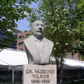 Vázsonyi Vilmos portréja