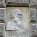 Charles Darwin domborműves emléktábla
