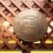 Diószegi Sámuel és a róla elnevezett iskola címere