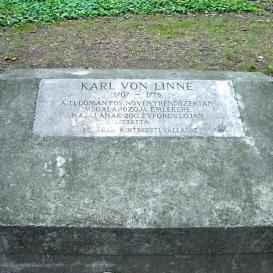 Karl von Linne emlékkő
