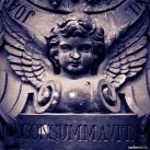 Négy Prímás címere