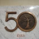 50 éves az Orosházi Kórház