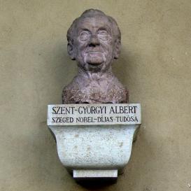 Szent-Györgyi Albert-mellszobor
