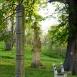 Kétnyelvű kopjafa