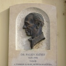 Dr. Palov József-emléktábla