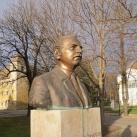 Hajdu Frigyes dr.