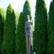 Szent István faszobra