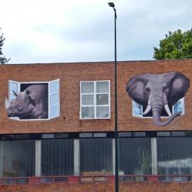 Elefánt és az orrszarvú
