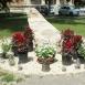 A veronai buszbaleset áldozatainak emlékére