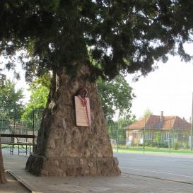 Hősi halált halt diákok emlékműve