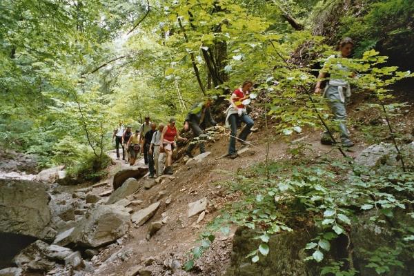 Klettersteig Ardennen : Klettersteig beschreibung via ferrata de pont