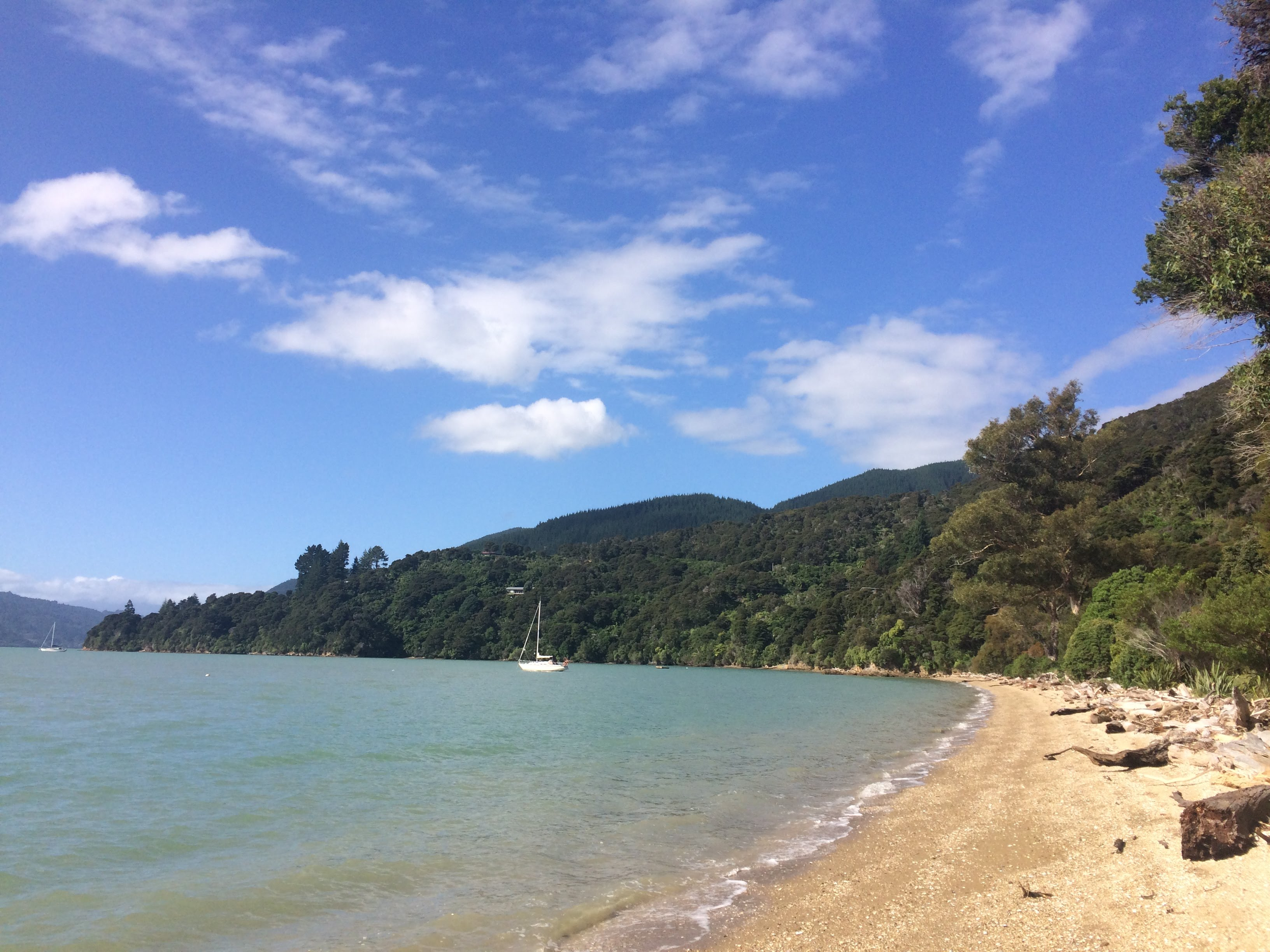Moetapu Bay