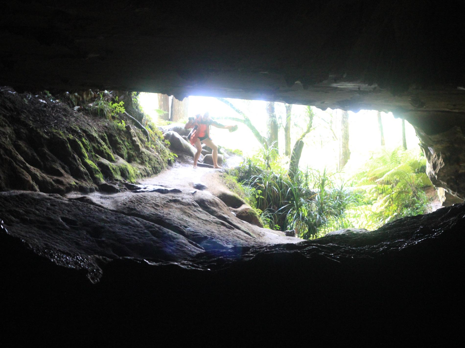 Waipu cave's exit