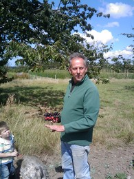 farmer fridd with his cherries