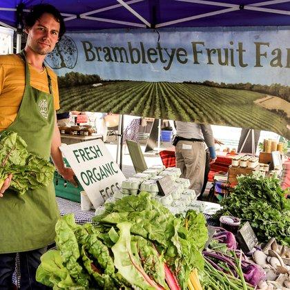 Brambleyte Fruit Farm Stein