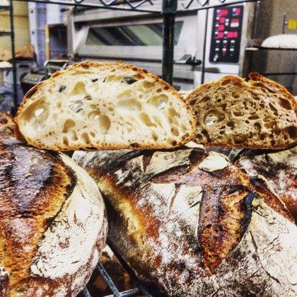 Bread Bread  Feb 2016