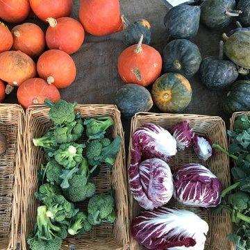 Earls Court Farmers Market Wild Country Organics