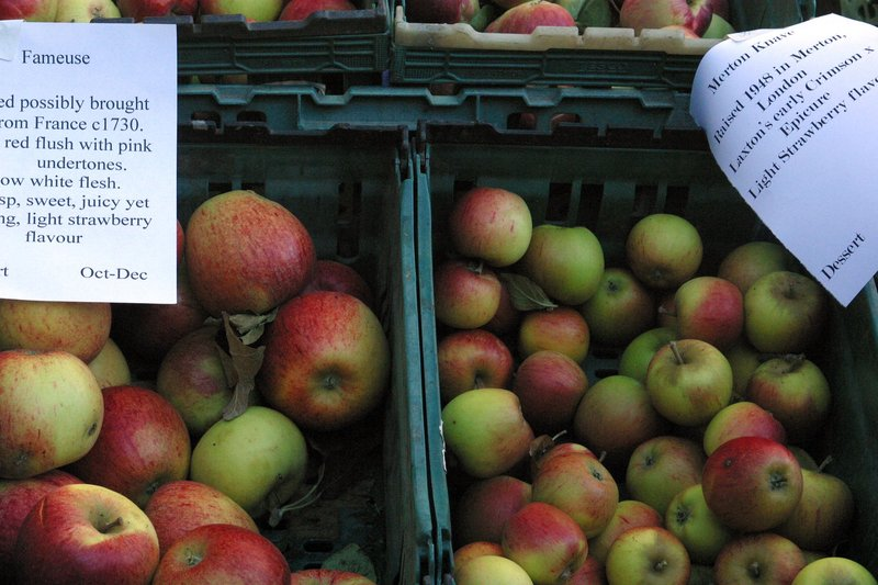 Perry Court Farm heritage apples