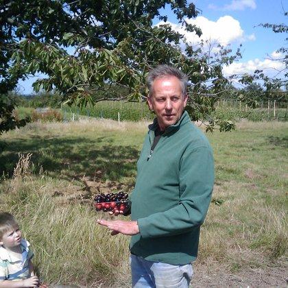Robin Friid on farm w cherries