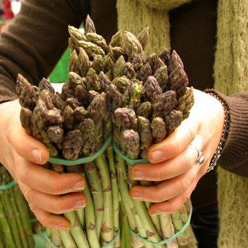 asparagus woman MA