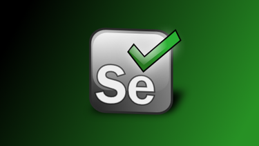 Selenium WebDriver training