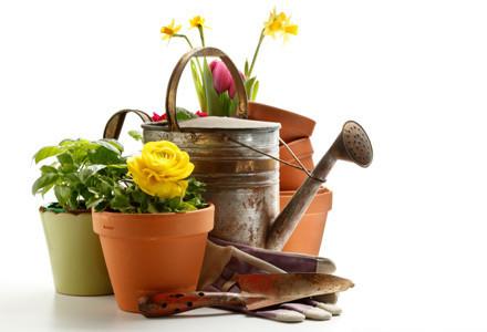 Gartengeräte, Grills & Möbel günstig online kaufen