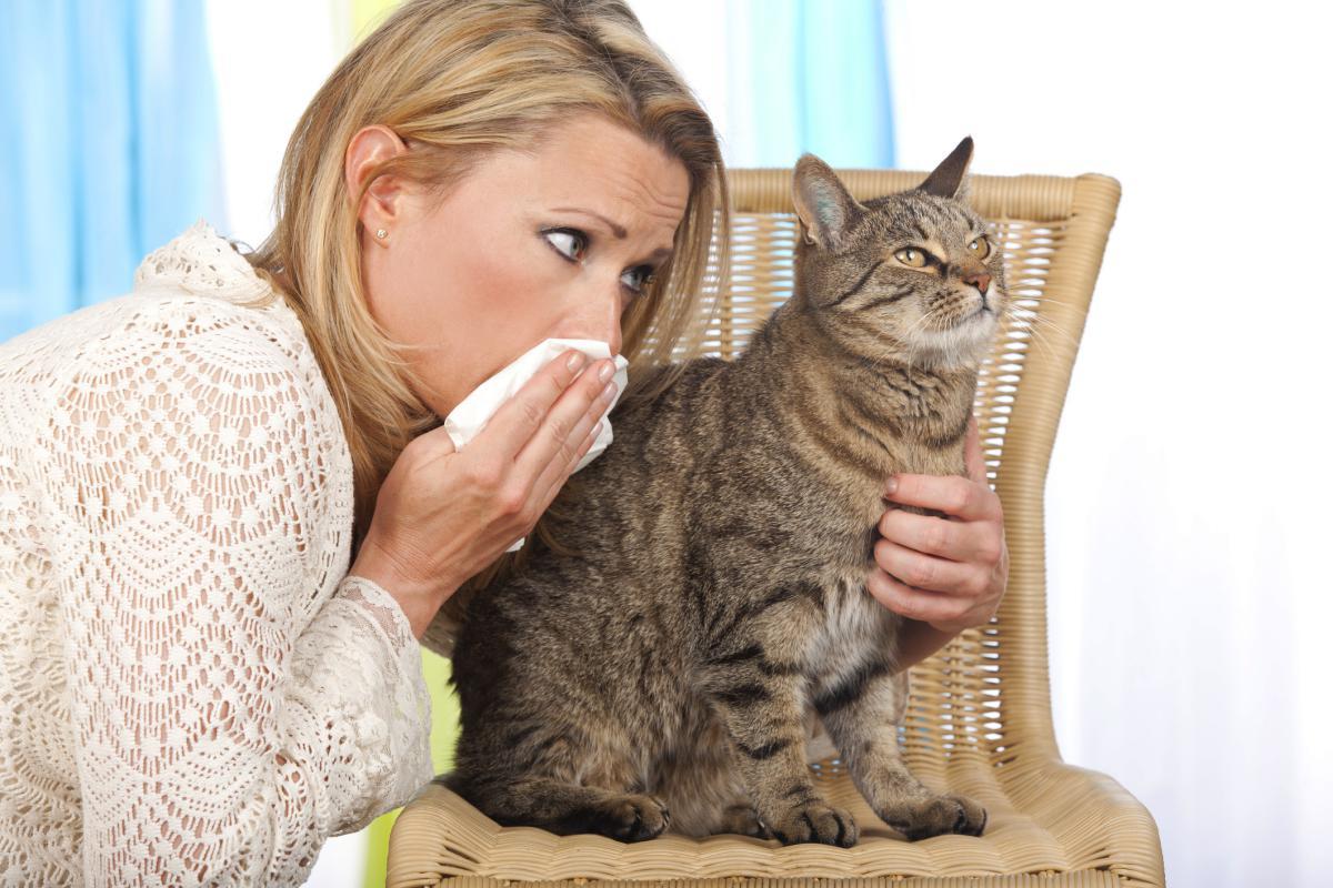 Первая в мире вакцина от COVID-19 для животных одобрена к использованию Россельхознадзором - изображение 1