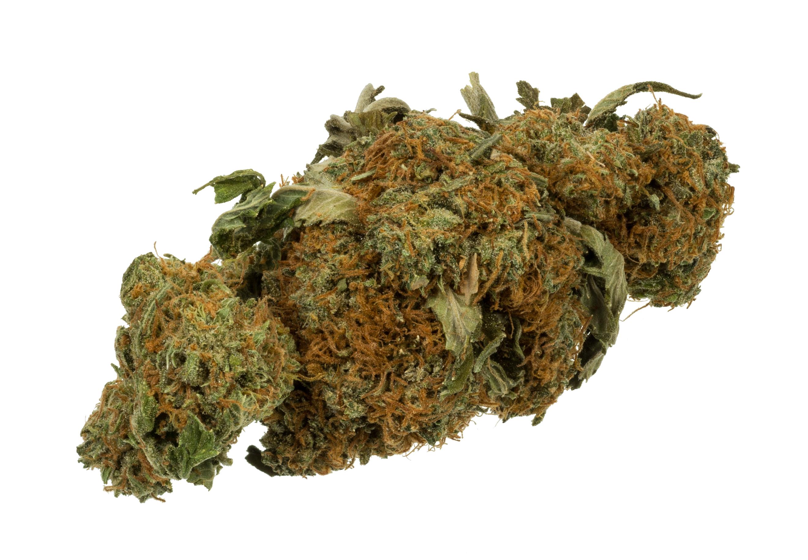 ВЛитве предлагают узаконить медицинскую марихуану