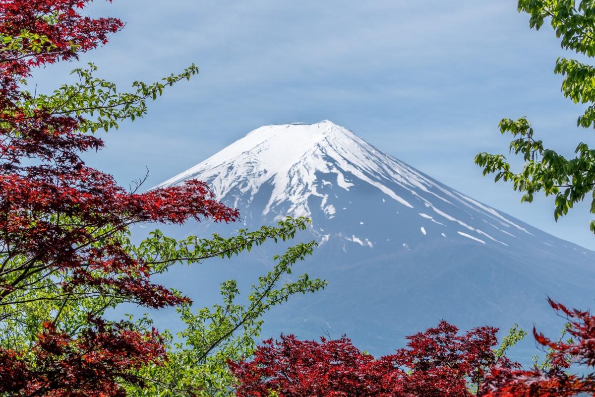 Japan will requireTB checks for long-stay visas - 图片 1