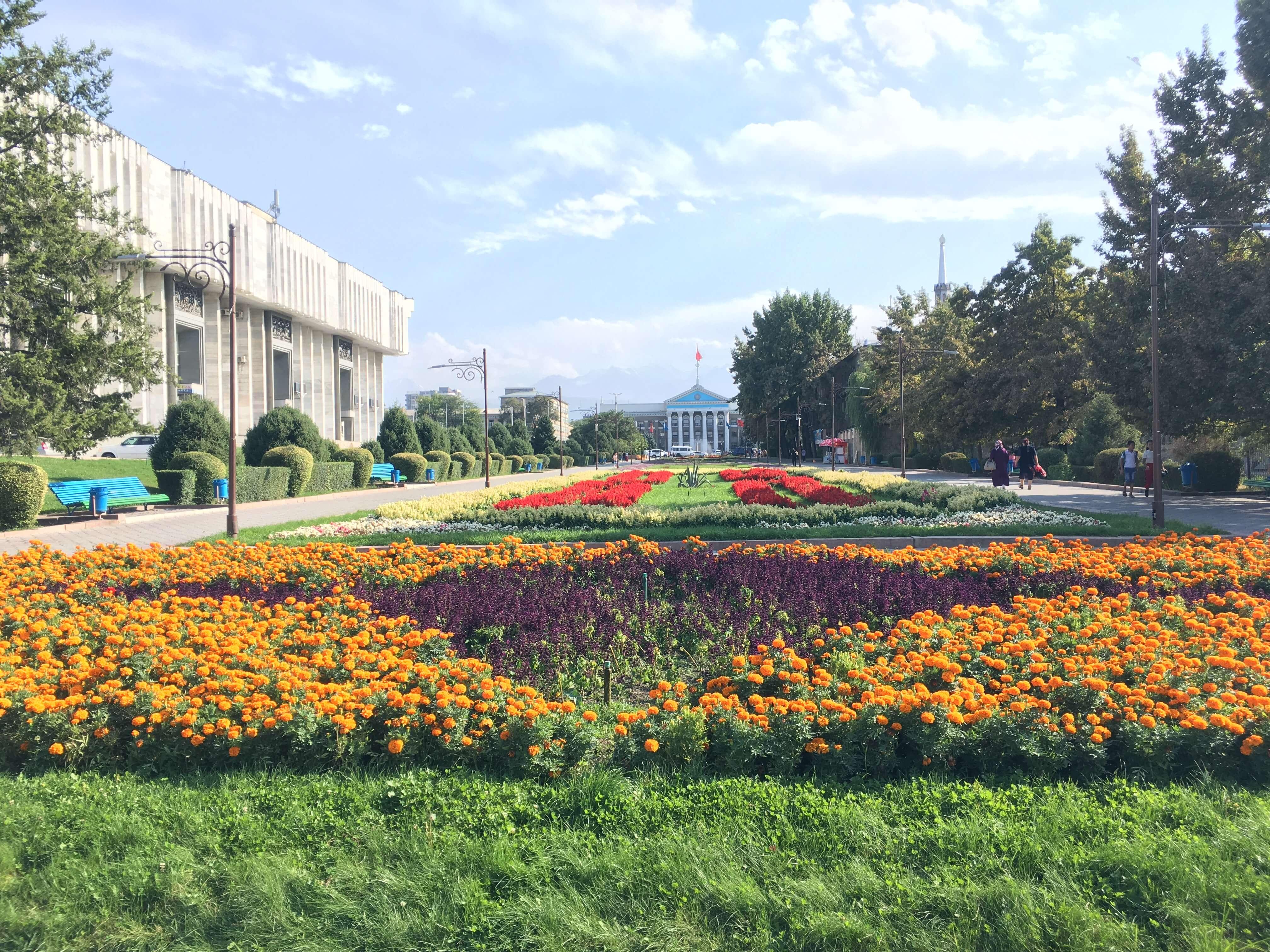 Долутегравир рекомендован для всех. В Кыргызстане обновлены протоколы лечения ВИЧ-инфекции - изображение 1