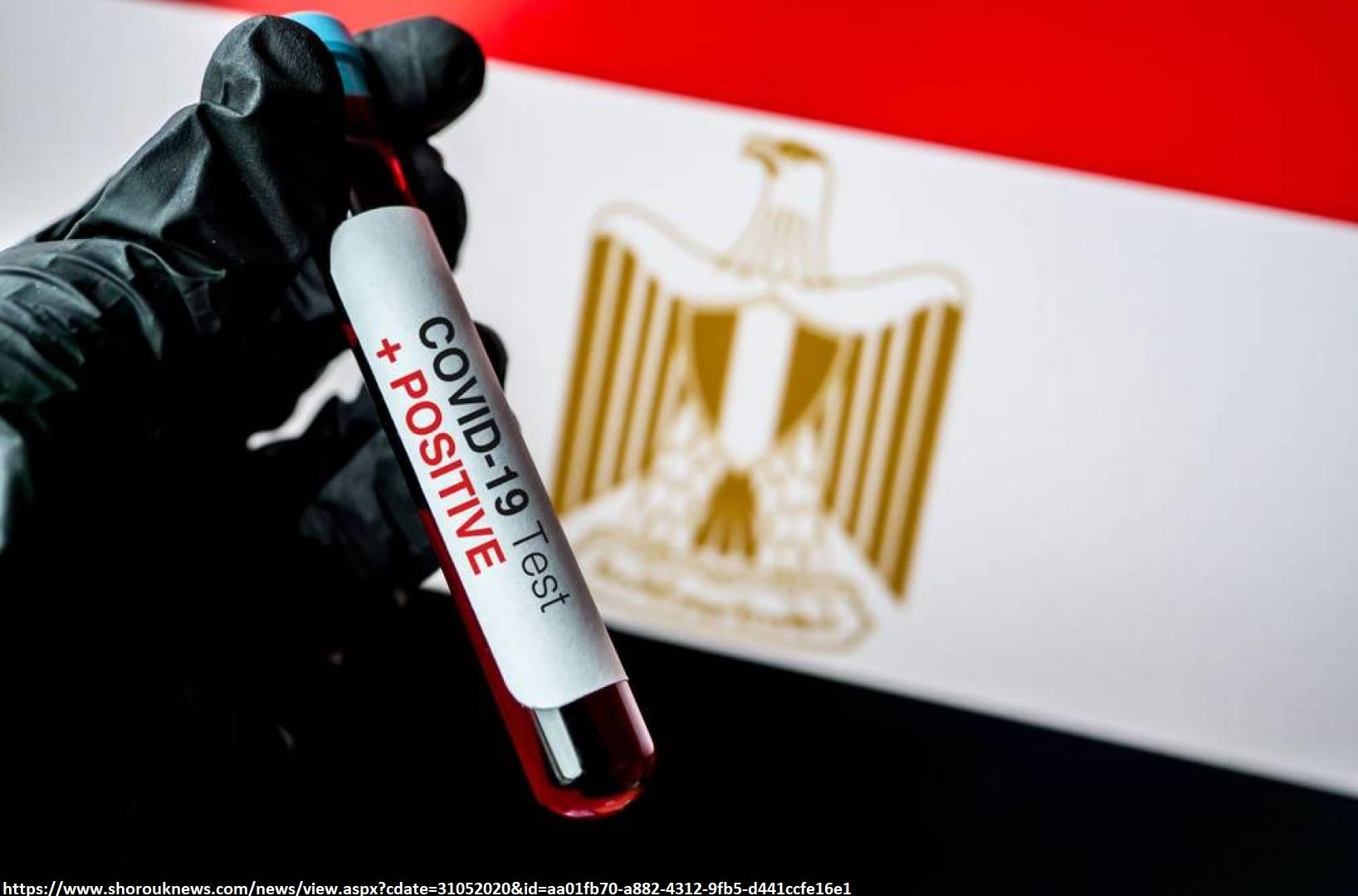 """مصر  """" دور منظمات المجتمع المدني في التقليل من مخاطر فيروس كورونا على المتعايشين """""""